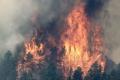 فرار الآلاف من حرائق الغابات بكولورادو الأمريكية