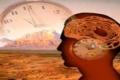 اكتشاف مكان الساعة البيولوجية فى الإنسان