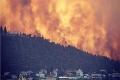 استعار حرائق الغابات في جبال القدس.. وإسرائيل تطلب مساعدات دولية