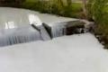 """نهر في ويلز يتحول إلى """"وادٍ للحليب"""".. حادثة تُغير لونه للأبيض (فيديو)"""