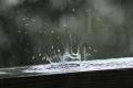 كميات الأمطار للموسم المطري الحالي: دير الغصون وعصيرة الشمالية وسلفيت ونابلس في المقدمة واريحا ورفح ...