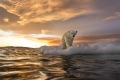 """""""آخر منطقة جليدية"""" في القطب الشمالي تكشف عن علامات مثيرة للقلق!"""