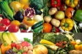 الخضراوات في فلسطين أقصر طريق للإصابة بالسرطان