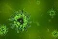 ما هي الفيروسات؟ وكيف اكتشفت؟