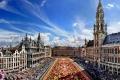 """""""سجادة الورد"""" في العاصمة البلجيكية بروكسل .."""