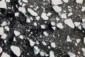 """""""لأول مرة منذ بدء التسجيلات"""".. بحر القطب الشمالي لم يتجمد حتى الآن"""