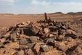 دُفن مع أصحابه قبل آلاف السنين.. رفات كلب في السعودية تكشف عن نتائج صادمة