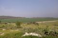 اعلان النتائج النهائية لأول تعداد زراعي في الاراضي الفلسطينية لعام2010