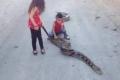 شاهد الفيديو.. طفلة فلسطينية من الضفة الغربية تتنزه مع أفعى ضخمة!