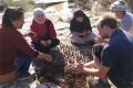 كرات البذور: طريق إلى معالجة المناطق القاحلة في فلسطين