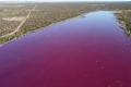 بحيرة في الأرجنتين تتحول إلى اللون الوردي بسبب غير طبيعي