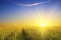 """""""فلكية جدة"""": بقعة الشمس الانفجارية تهدد كوكب الأرض"""
