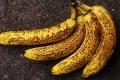 لماذا عليك أن تأكل الموز الناضج؟