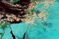 """غيوم""""عيلبون"""" في سماء فلسطين عبر أقمار وكالة ناسا اليوم الاثنين 11/12/2012"""