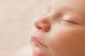 شرح جديد يكشف لماذا يتمتع ذوو الرضاعة الطبيعية بأنظمة مناعية صحية؟