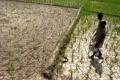 الهند تتخوف من الجفاف بسبب قلة الامطار الموسمية هذا الصيف