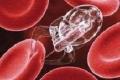 علماء يكتشفون مادة موجودة في العطور داخل أنسجة مصابة بالسرطان