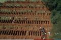 """استعداداً للأسوأ.. صور مُخيفة لمقابر جماعية ضخمة لدفن ضحايا """"كورونا"""" في البرازيل"""