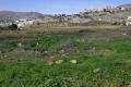 محطة التنقية شرق نابلس: اعتبارات ومواقف متضاربة بين الأهالي وبلدية نابلس