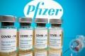 شركة فايزر: اللقاح يفقد فعاليته ضد طفرة جنوب إفريقيا