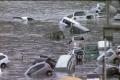 زلزال اليابان أقوى بمئات المرات من زلزال هاييتي وجزر اليابان أزيحت عن محورها