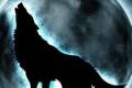"""""""بوجه مخيف"""".. علماء يعثرون على مخلوق """"زيهور"""" عاش قبل 57 ألف عام... بالصور والفيديو"""