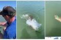 شاهد.. صراع بين تمساح وصياد في نهر فيكتوريا بأستراليا.. تابع ماذا جدث!