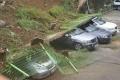 بالصور...إعصار سانبا يضرب كوريا الجنوبية .. ويقطع الكهرباء عن 10 آلاف أسرة.