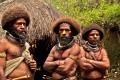 اكتشاف 1000 نوع جديد من الحيوانات في ثاني اكبر جزر العالم.....شاهد الصور الغريبة