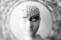 أحدهما يجعل منا أشخاصا مميزين   هل تعرف الفرق بين الدماغ والعقل؟