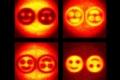 """""""الهولوغرافيا الكمية"""".. قفزة علمية قد تسمح ببناء صور غاية في الدقة لخلايا أجسامنا"""