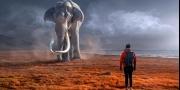أداة جديدة لاقتفاء آثار الحيوانات المنقرضة