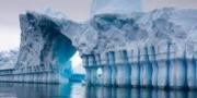 علماء يكتشفون بالصدفة كائنات حية في أعماق القارة القطبية الج ...