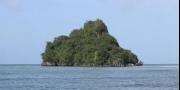 محصنة من الوباء وممنوعة على البشر.. أكثر الجزر عزلة في العال ...