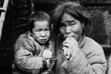 لماذا يأكل الصينيون الحشرات والزواحف وكل الكائنات الحية على الأرض؟ ...
