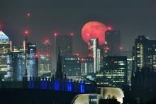 البدر الأكبر والأكثر سطوعا في العام .. القمر الوردي العملاق ...