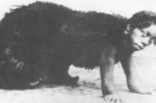 ربَّته الذئاب وعثر عليه الصيادون في غابات الهند.. ماوكلي الحقيقي: ...
