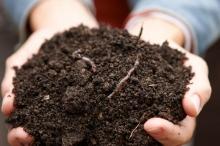 الآليات والاستراتيجيات غير الكيميائية للتحكم بالآفات والأمراض الزراعية