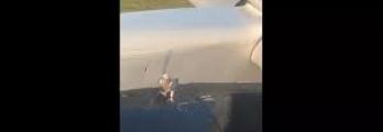 حمامة خارقة تتشبث بمحرك طائرة أثناء الإقلاع والنتيجة غير متوقعة... فيد ...