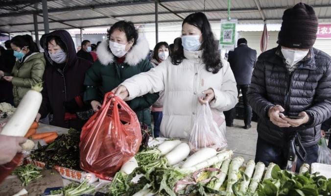 كورونا وسارس وإنفلونزا الطيور.. لماذا تظهر كثير من الفيروسات بالصين؟
