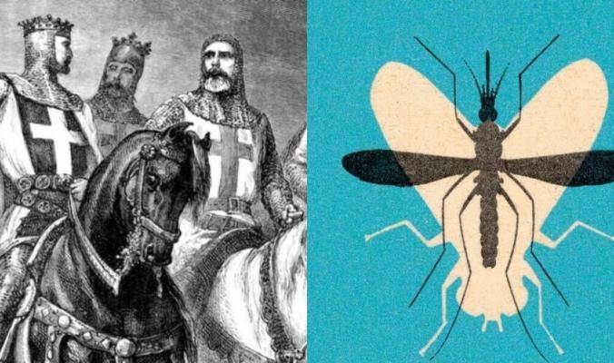 تسبب في هزيمة الجيوش الصليبية أمام المسلمين.. كيف عبث البعوض بتاريخ البشر