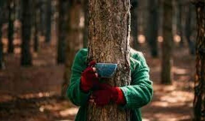 هل صناعة القهوة ضارة بالبيئة؟ إليك كيف يؤثر كوب قهوتك على الكوكب