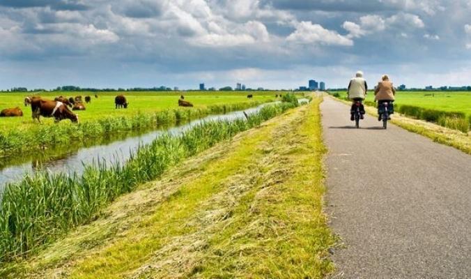 كيف أصبح شعب هولندا من أطول الشعوب قامة في العالم؟