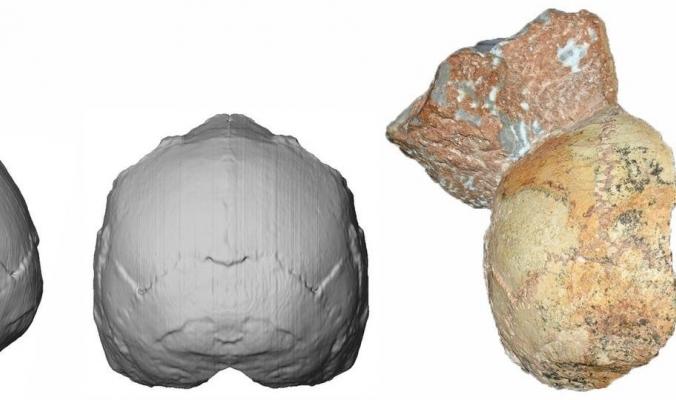اكتشاف جديد عن أول انتقال للجنس البشري خارج إفريقيا