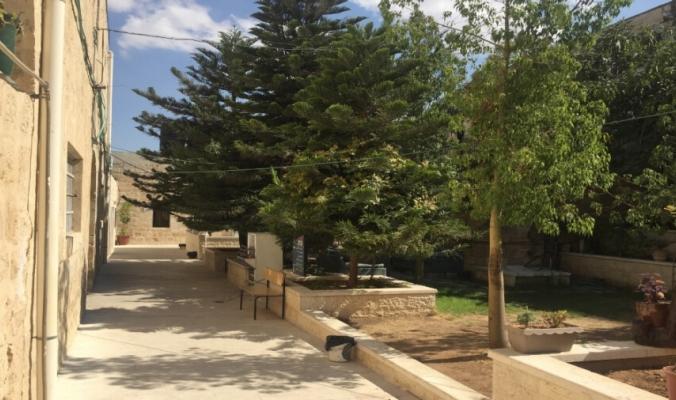 أوبئة فلسطين: هزات اجتماعية واقتصادية ودروس من قلب التاريخ