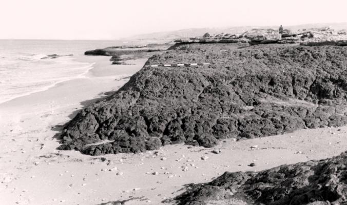 قرية عتليت قضاء حيفا