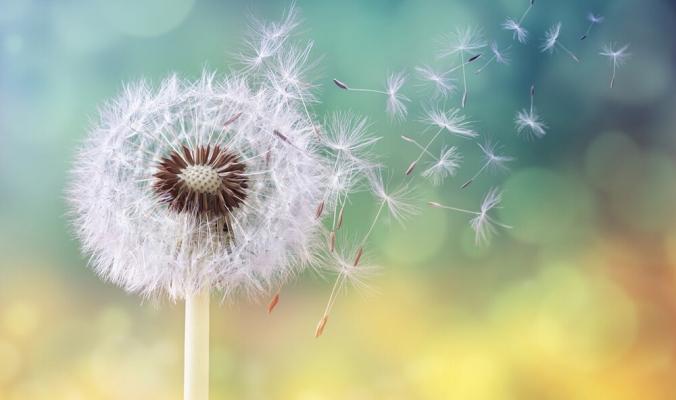 لأنها ليست الأسوأ: حقائق غريبة عن عالم الحساسية تهون عليك حساسية الربيع