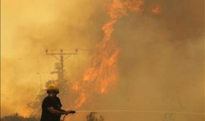 حرائق حيفا تلتهم غابات وأحراش تفوق حجم مدن طولكرم وجنين وقلقيلية مجتمعة وإسرائيل تتخبّط