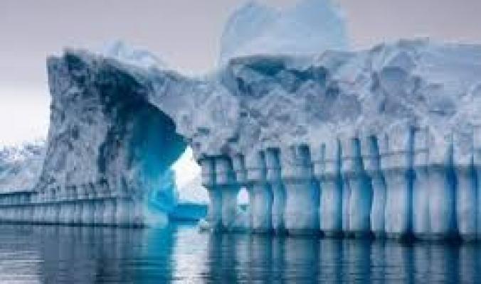 علماء يكتشفون بالصدفة كائنات حية في أعماق القارة القطبية الجنوبية