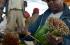 بالصور | لا يأكلون الطعام ويمضغون القات.. تعرف على قصة النبتة العجيبة في إثيوبيا